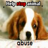 Animal abuse avatars