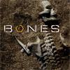 Bones avatars