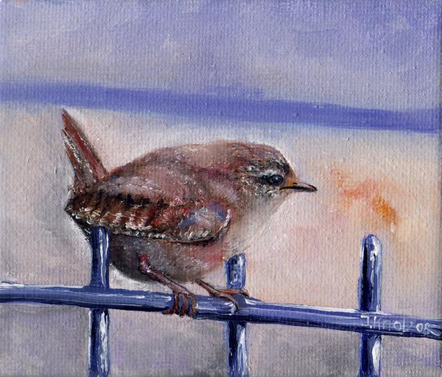 Winter wren bird graphics