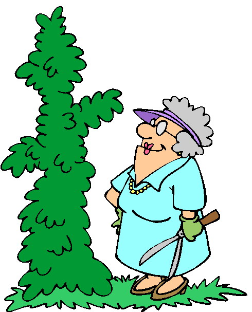 clipart garden images - photo #47