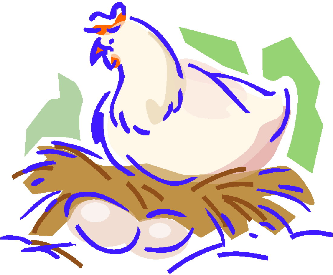 how to produce chicken feed