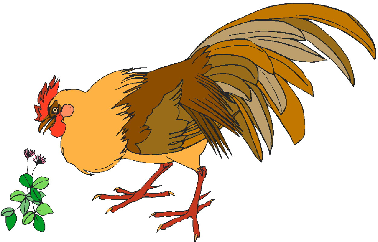 HD wallpapers baby chickens coloring pages