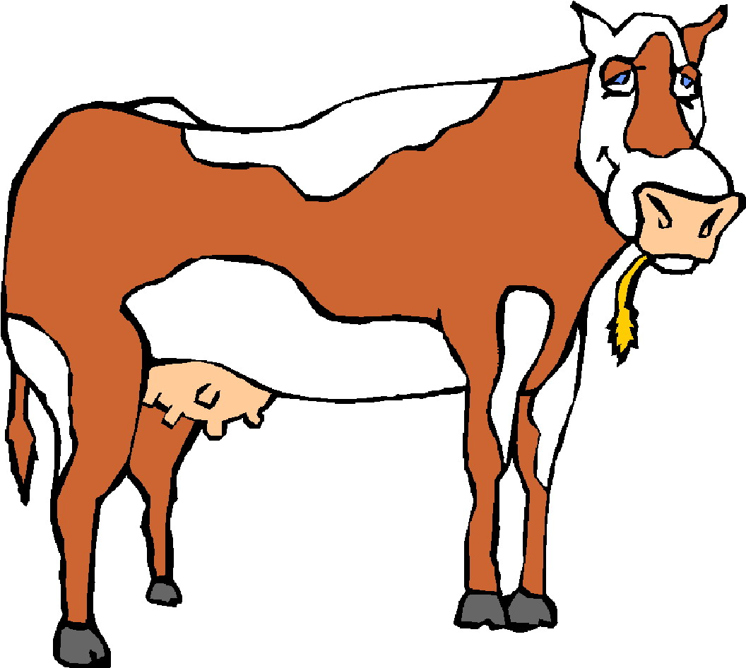 clipart cow pictures - photo #48