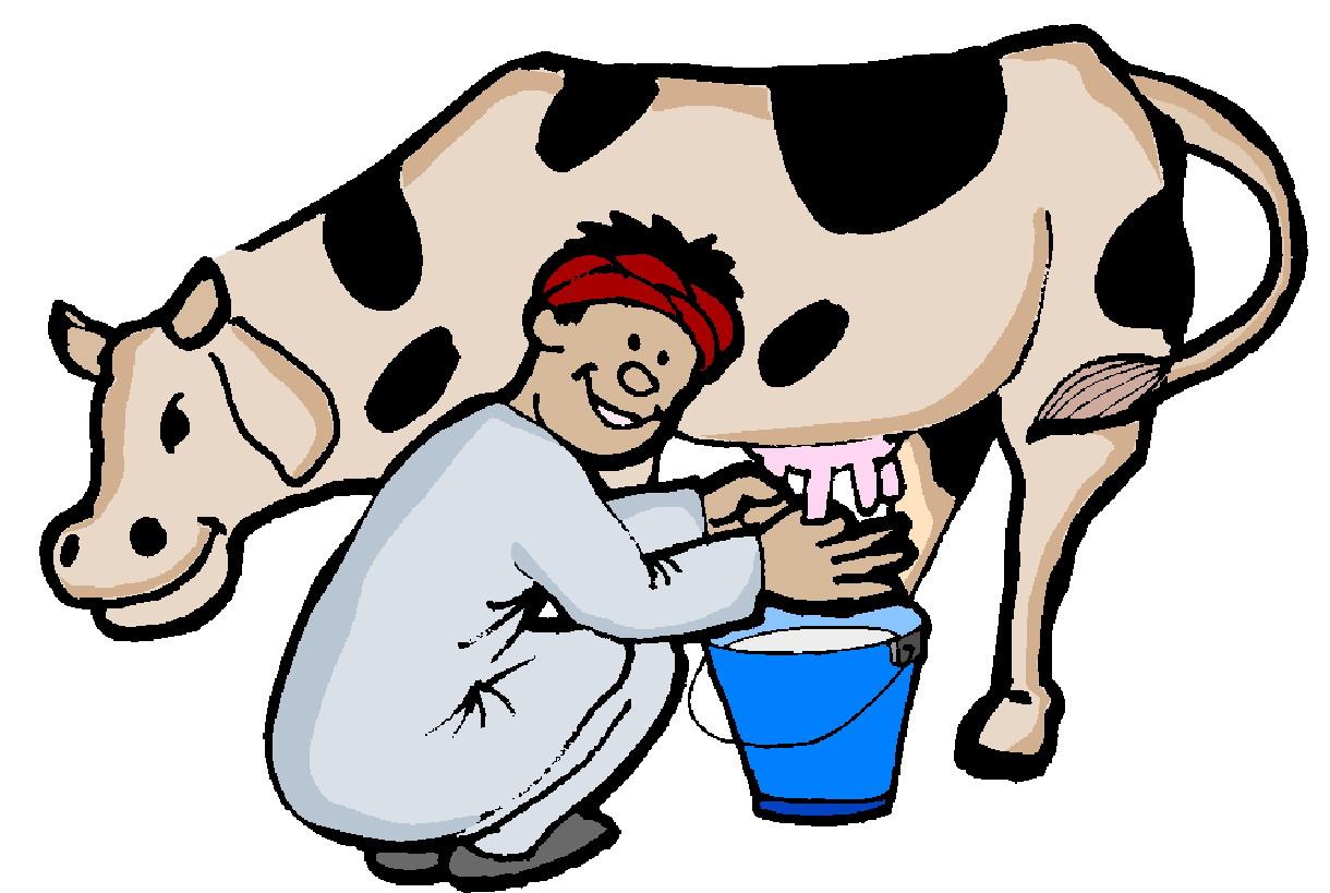 Clip Art Cows clip art