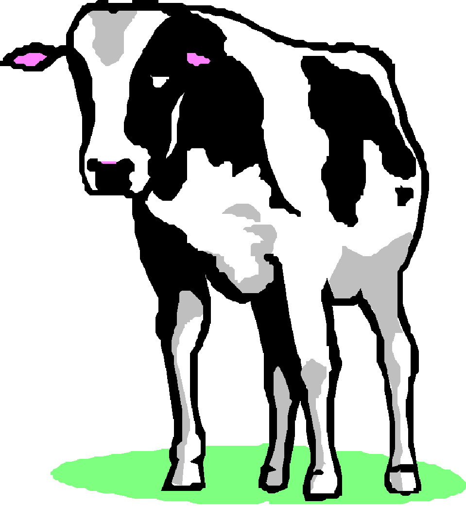 free clip art cow border - photo #45