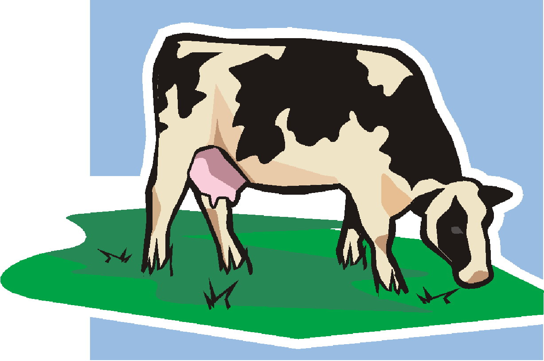 clip art holy cow - photo #30