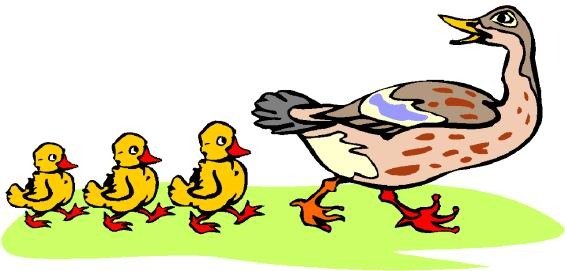 ducks clip art farm picgifs com rh picgifs com duck clip art for kids duck clipart free