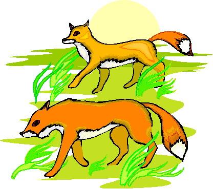 Foxes clip art