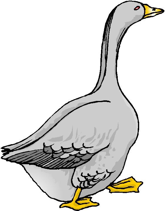 Clip art » Geese Clip art