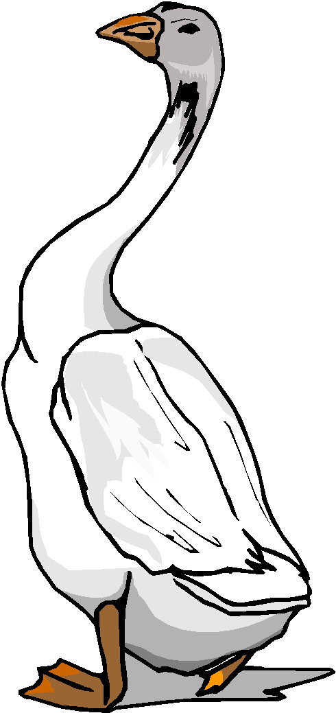 goose hunting clipart - photo #36