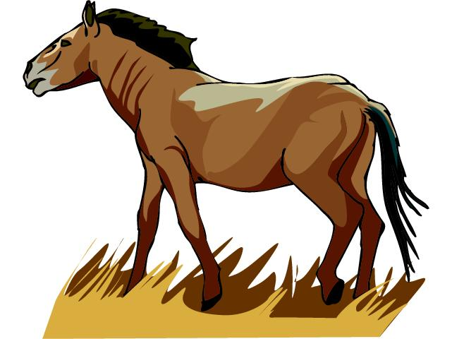 clipart horse - photo #30
