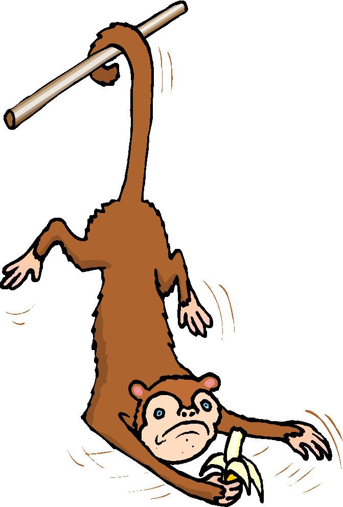 monkeys clip art farm picgifs com rh picgifs com clip art monkeys cartoon clip art monkeys free