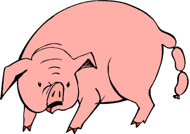 clip art funny pigs - photo #25