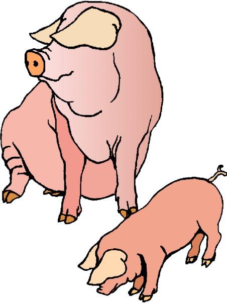 clip art funny pigs - photo #24