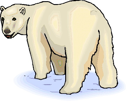 Pics Photos - Polar Bear Clip Art Pictures Of Polar Bears