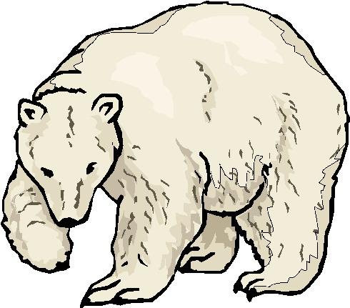polar bear clip art 0511 1209 2120 1540 picture of a baby polar bear ...