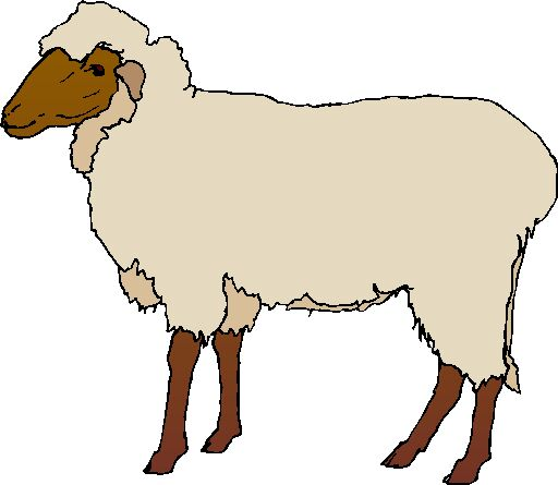 sheep clip art farm picgifs com rh picgifs com sheep clip art images free sheep clip art drawing