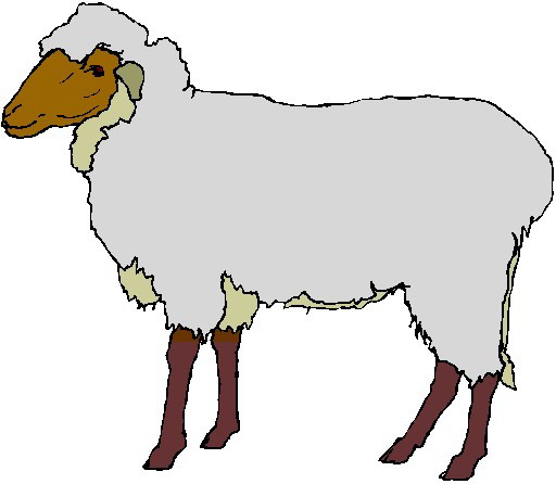 clipart of jesus with sheep - photo #32