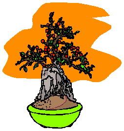 Bonsai clip art