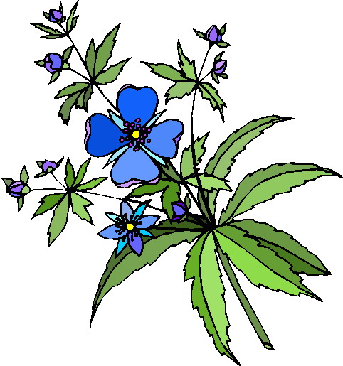 clipart of plants - photo #39