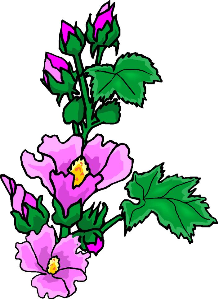 clipart of plants - photo #50