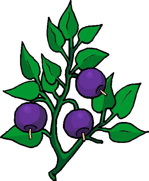 clip art flowers and plants plants picgifs com rh picgifs com clipart planet clip art plants and animals
