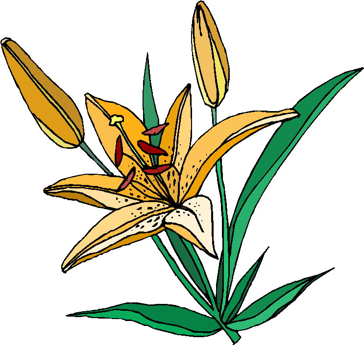 free clipart plants and flowers - photo #29