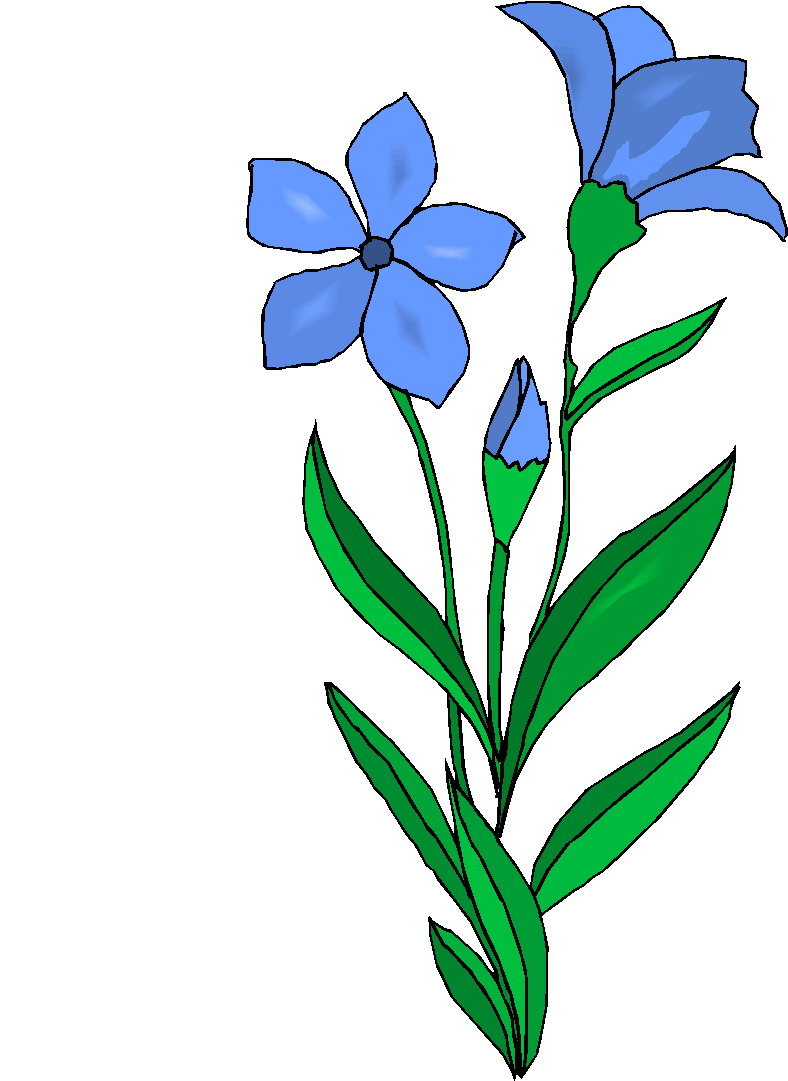 free clipart plants and flowers - photo #4