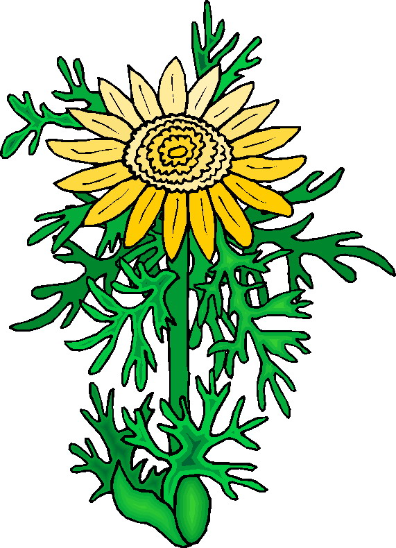 clipart of plants - photo #15
