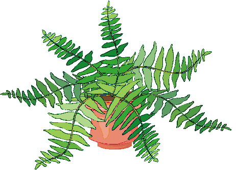 Clip art » Plants Clip art: www.picgifs.com/clip-art/plants