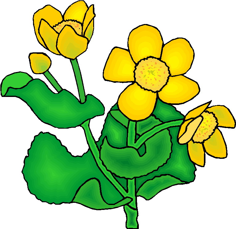 Clip art Flowers and plants Plants