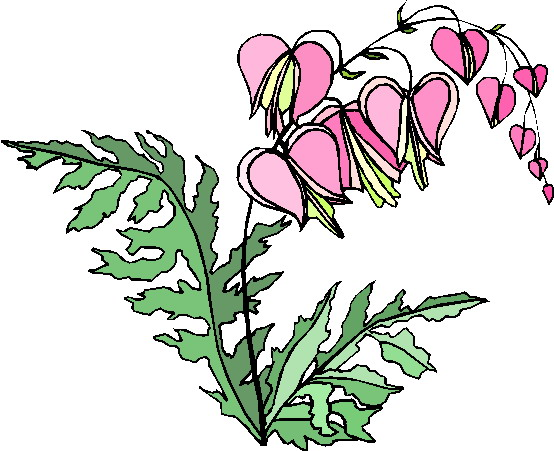 clipart of plants - photo #9