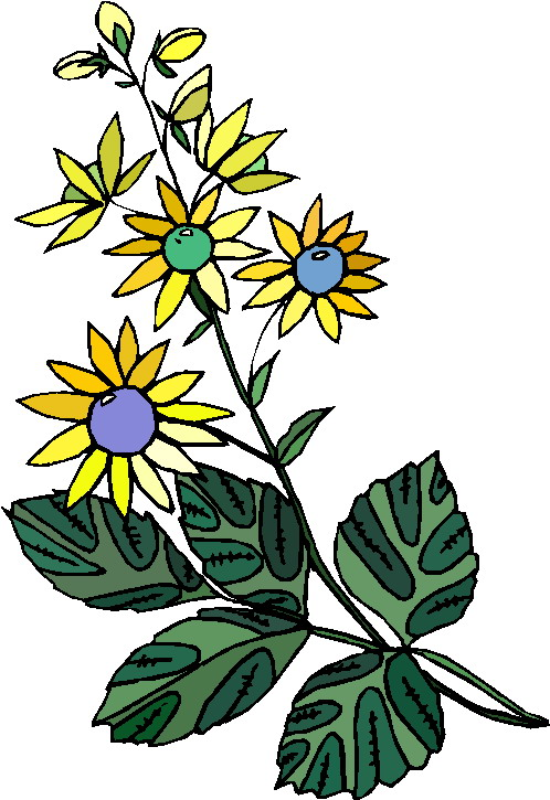 clipart of plants - photo #37