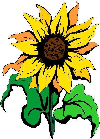 Sunflower Clip Art Flowers And Plants   PicGifs.com