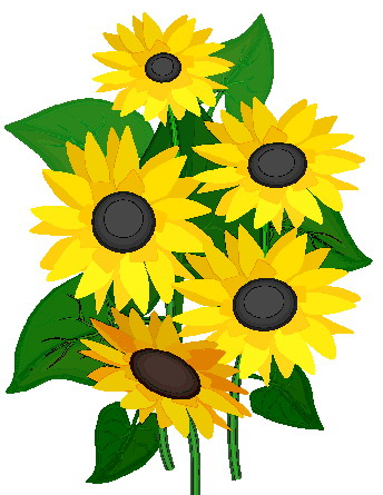 sunflower clip art flowers and plants picgifs com rh picgifs com clipart sunflower pictures clipart sunflower border