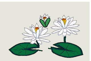Water lily clip art