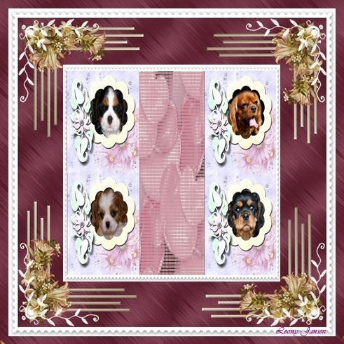 Cavelier dog graphics