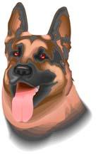 Herding dog dog graphics