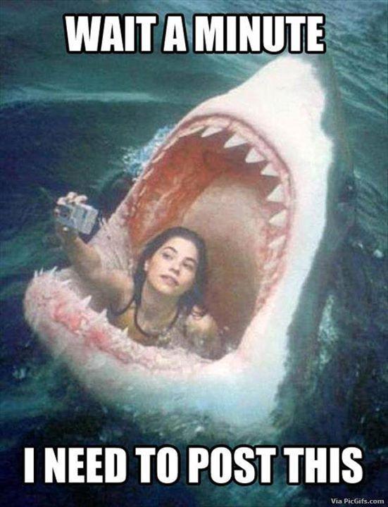 Facebook graphics Selfie humor