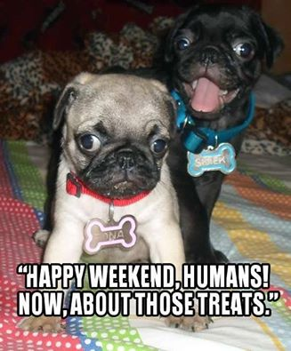 Weekend Facebook graphics Happy Weekend, Pug