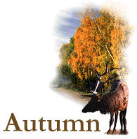 Autumn graphics