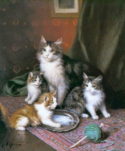 Cats graphics