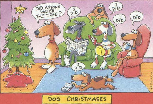 Christmas humor graphics