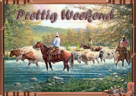 Cowboy graphics