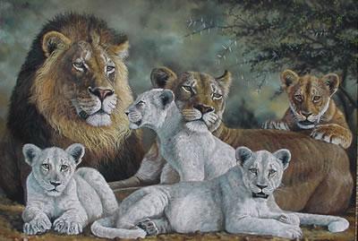 Lions graphics
