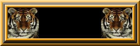 Names blank graphics