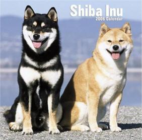 Shibas graphics