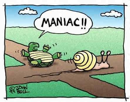Turtles graphics
