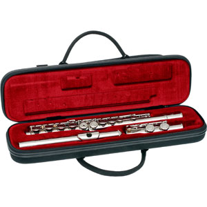 Western concert flute graphics