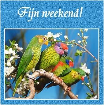 Wonderful weekend